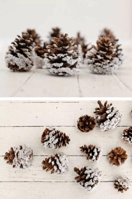 Kankorėžiai padengti sniegu, kalėdiniems papuoimams